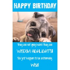 Card - Birthday Chiko