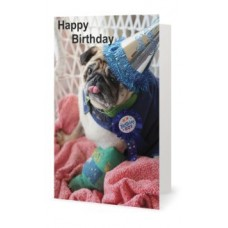 Card - Birthday Bob