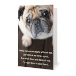 Wholesale Card Bob
