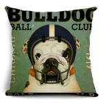 Cushion Biker Bulldog