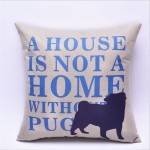 Cushion A house is not a....